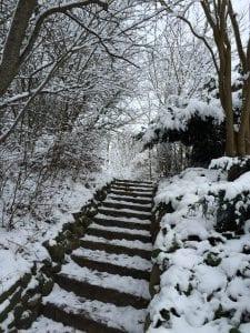 stress, gåtur, gå, tur, vinter, winter, danmark, denmark