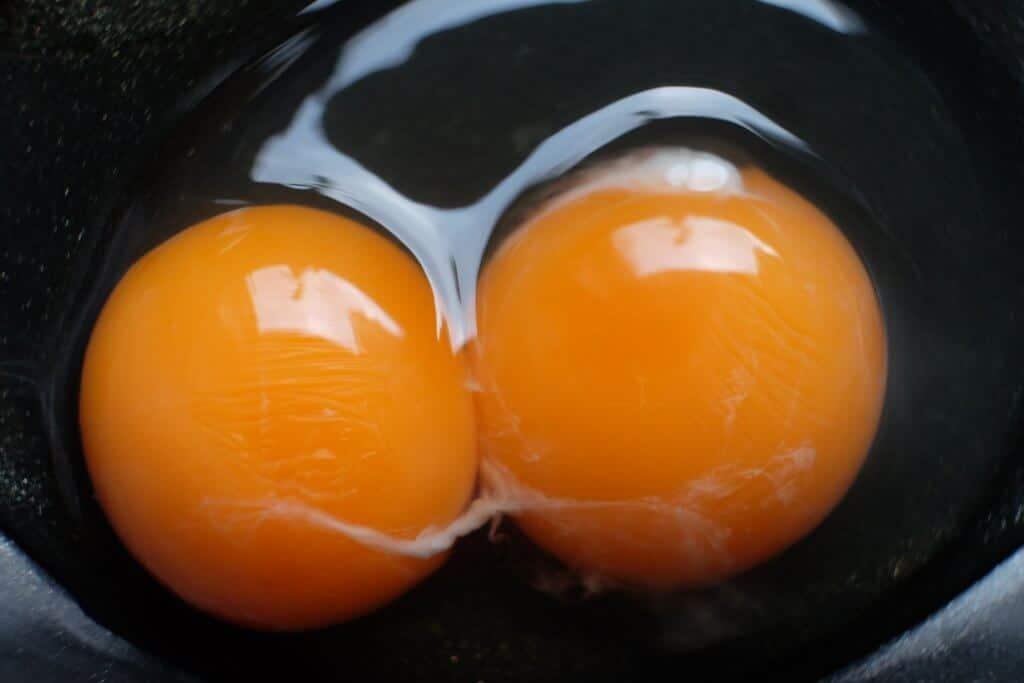 Æg med dobbeltblomme fra egne høns i haven